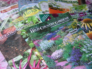 Think_spring_seed_catalogs_2